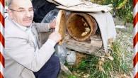 Yeni Bir kazanç kapısı; doğal Karakovan balı..