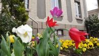 Bahar İle Birlikte Park Bahçe Çalışmaları Hızlandı