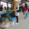 Tosya'nın ilk tarım ürünü pazarda yerini aldı