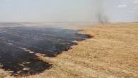 Yangına erken müdahale felaketi önledi