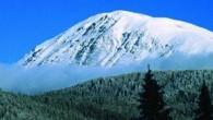 Tosya'yı kış telaşı sardı Ilgaz'a İlk Kar Düştü