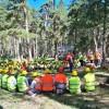 Sertifikalı Ormanlar Tosya'da Yetişecek