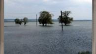 Kırkikindi yağmurları Tosya yı Sevdi