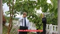 Gökçebay Tosya'da Bir Bağda Stres Attı