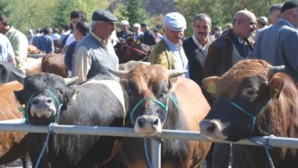 Hayvan Pazarları Hareketlendi