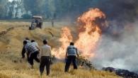 Anız Yangınları Toprağa Zarar Veriyor!