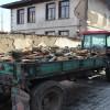 Tosya'da,soğuklar odun satışını artırdı