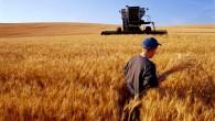 Tosyalı Çiftçilere Müjde