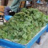 Tosya'da Asma Yaprağı  10 TL