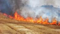 Çiftçiler Dikkat:Anız Yakmak Yasak!