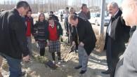 Tosya OSB de Ağaçlandırma Çalışmaları Başladı