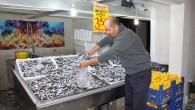 Tosya'da Hamsi 3,5 TL den  Satıldı