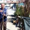 """KAYMAKAM TÜRKÖZ """"TOSYA'DA MEYVE ÜRETİMİNE İLGİ ARTIRILACAK"""""""