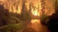 Tosya Ortalıca Beldesinde Çıkan Yangın Kontrol Altına Alındı