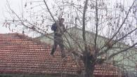 Çatıdan İnemeyen Kediye İtfaiyenin Yardım eli..