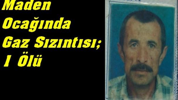 Tosya Büyük Sekiler Köyü'nde 1 Ölü
