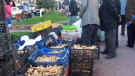 Sebze fiyatları normale döndü