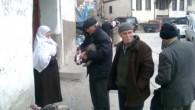 Tosya'da Yılbaşı Hindileri Görücüye Çıktı