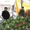 Tosya Sebze Pazarına Karpuz Düştü