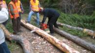 Ormanda Uygulamalı Eğitim Verildi…