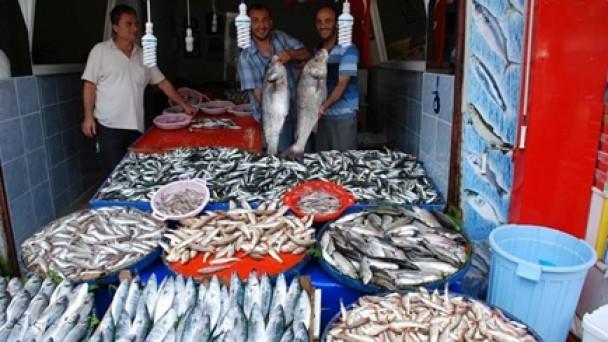 Karadeniz'de balık bolluğu yaşanıyor…