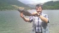 Kösen Çayırı'nda Kıyıya Vuran Balıklar Korkuttu