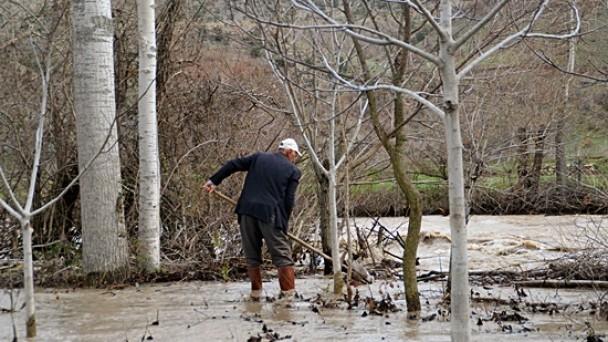 Tosya'da Çeltik Tarlalarını Sel Bastı