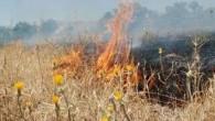 Ot Yangını Büyümeden Söndürüldü