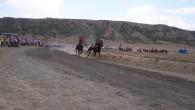 At yarışlarının devam etmesini temenni ediyoruz