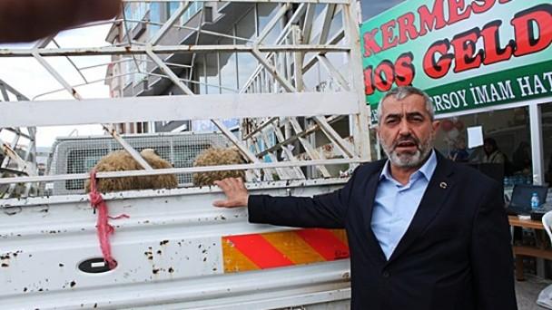 CHP Adayı iki adet kurban bağışladı