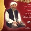 Mehmet Feyzi Efendi Anılıyor