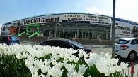 Tosya'nın Kültürel Değerleri Bursa'da Tanıtılacak!