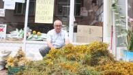 Sarı Kantaron Bitkisinin Alımına Başlandı