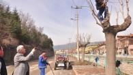 Park ve bahçelerde bahar hazırlıkları başladı