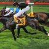 At Yarışları Hafta Sonu Başlıyor