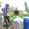 Tosya Akbük Köyünde Bağ Ziyaretleri