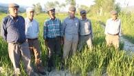 Tosyalı Çiftçilerin Su Sorunu Çözülmüyor