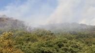 Kastamonu'da çıkan orman yangını helikopter ile söndürüldü