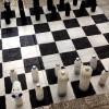 Öğrencilerine pet şişelerinden satranç takımı yaptı
