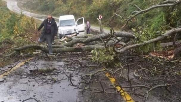 Kastamonu-Çatalzeytin yolu heyelan nedeniyle kapandı