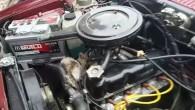 Seyir halindeki aracın motorundan kedi çıktı