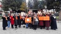 Tosya Kadına Şiddete TEK YÜREK oldu