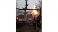 Kastamonu'da çıkan yangında 14 hayvan telef oldu