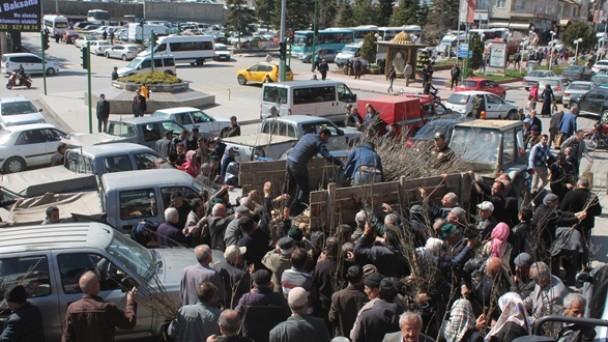 Tosya Orman İşletme Müdürlüğü Altı Bin Adet Fidan Dağıttı