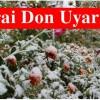 Tosya'da Zirai Don Uyarısı