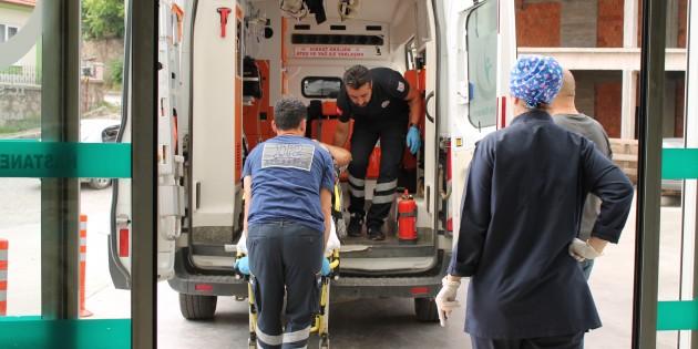 Tosya'da ağaçtan düşen kişi yaralandı