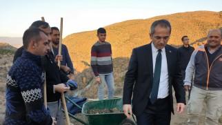 Tosya'da definecilerin talan ettiği alanda kazı çalışması
