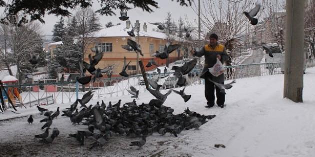Tosyalı Esnaflar Kuşlara Yem Bıraktı