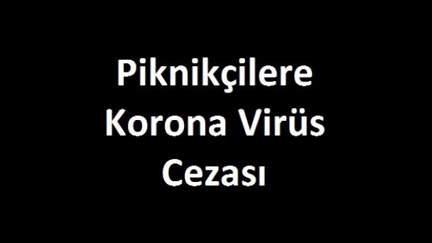 Tosya'da piknik yapan 4 kişiye ceza kesildi