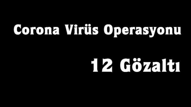 Tosya'da operasyon, 12 gözaltı